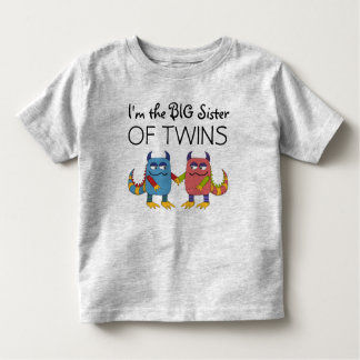I'm the Big Sister of Twins T Shirt