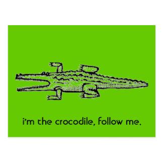 i'm the crocodile, follow me. postcards