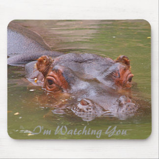 I'm Watching You Mouse Mat