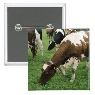 ima28991 15 cm square badge
