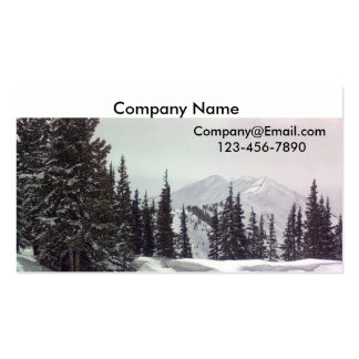 Image253, Company Name, Company@Email.com, 123-... Pack Of Standard Business Cards