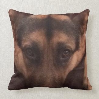 image cushion