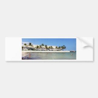 image.jpg Florida keys swimming Bumper Sticker