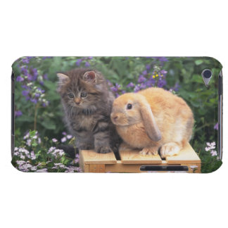 Image of a Kitten and a Lop Ear Rabbit Standing iPod Touch Covers