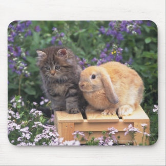 Image of a Kitten and a Lop Ear Rabbit Standing Mouse Pad