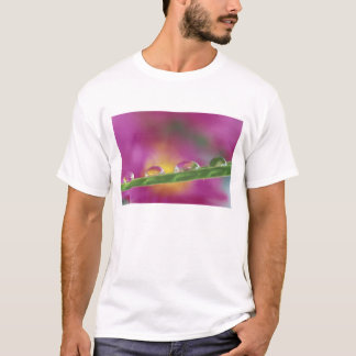 Image of asters formed in water droplets T-Shirt