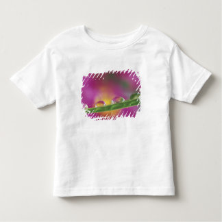 Image of asters formed in water droplets t shirts