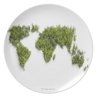 image of world map plate