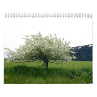 Images From America Wall Calendars
