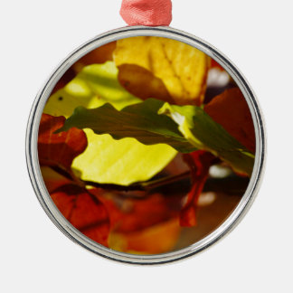 Images of Autumn Christmas Ornament