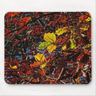 Images of Autumn Mouse Pad