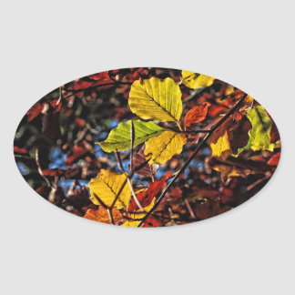 Images of Autumn Oval Sticker