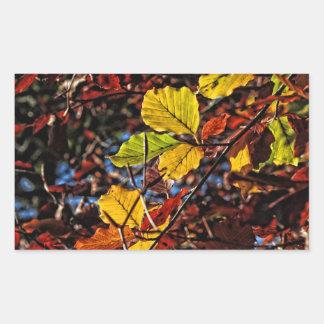 Images of Autumn Rectangular Sticker