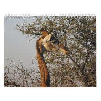 Images of South Africa Wall Calendars