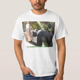 IMG_0177, You Look MARVELOUS! Tee Shirt