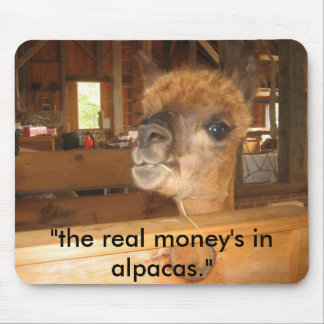 IMG_0591 the real money s in alpacas Mouse Pads