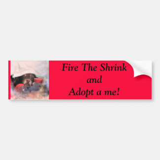 IMG_0642-2, Fire The Shrink  and Adopt a me! Bumper Sticker