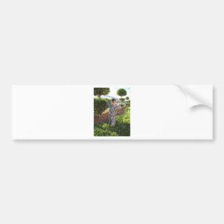 IMG_1440 crop Bumper Sticker
