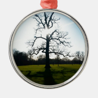 IMG_20150315_221727.jpg Christmas Ornament