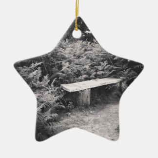 IMG_20150730_005111.jpg Christmas Ornament