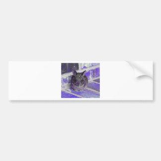 IMG_2046_purple_bunny Car Bumper Sticker