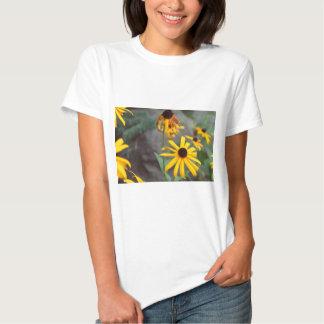 IMG_2222 Contrat and Aladdin Filter.jpg Shirts