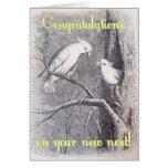 IMG_2979 GREETING CARDS