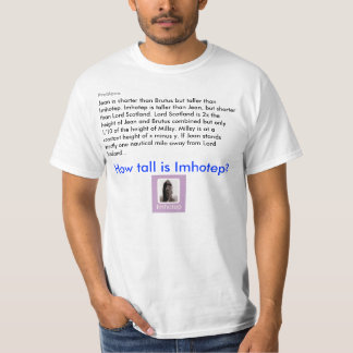 Imhotep is Invisible T-Shirt