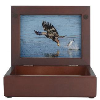 Immature Bald Eagle dropping a fish Keepsake Box