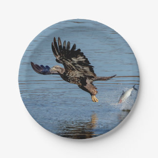 Immature Bald Eagle dropping a fish Paper Plate
