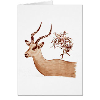 Impala Antelope Animal Wildlife Drawing Sketch Card