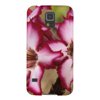 Impala Lily (Adenium Multiflorum), Kruger Cases For Galaxy S5