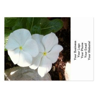Impatien White Plant Business Cards