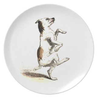Impawtance of exercise plate