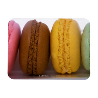 Imported gourmet French macarons (macaroons) Magnet