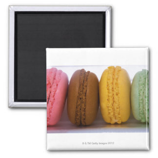 Imported gourmet French macarons (macaroons) Square Magnet
