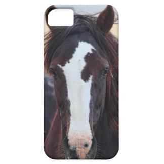 Imposing iPhone 5 Cases