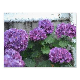 Impressionistic Hydrangea Photo Print