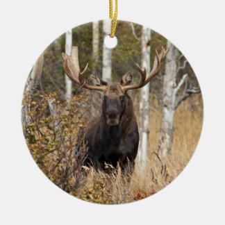 Impressive Bull Moose Christmas Ornament