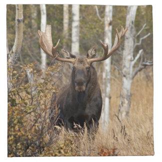 Impressive Bull Moose Napkin