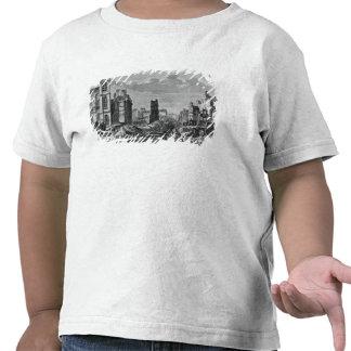Improvements to Paris Tee Shirt