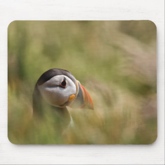 In a Sea of Green Puffin Mouse Pad