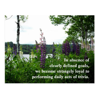 In absence of clearly defined goals,w... postcard