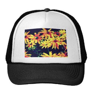 In artificial light mesh hats