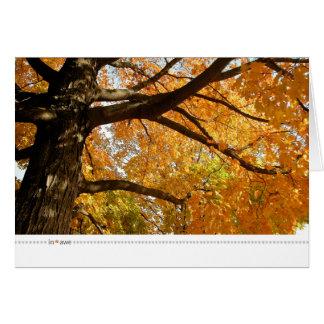 in*awe_oranges rising greeting card