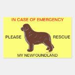 In Case of Emergency Newfoundland Dog Safety
