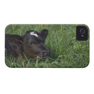 In Chinese zodiac, 2009 is year of ox. iPhone 4 Covers