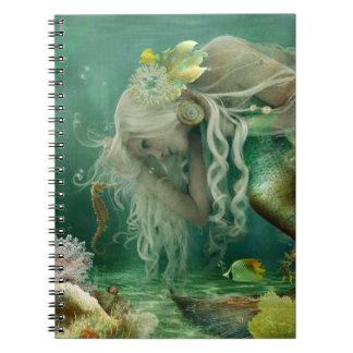 In depth Conversations Notebook