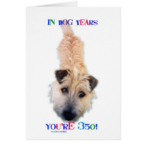 In Dog Years You're 350 Greeting Cards