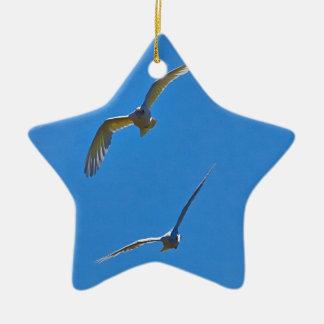 In Flight Ceramic Star Decoration